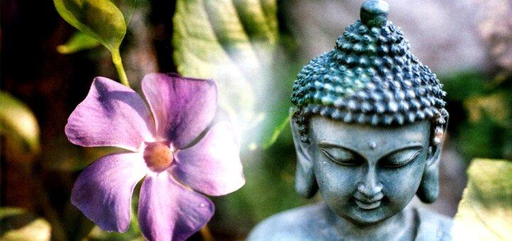 Come distinguere tra i sani desideri e la brama secondo il Buddha