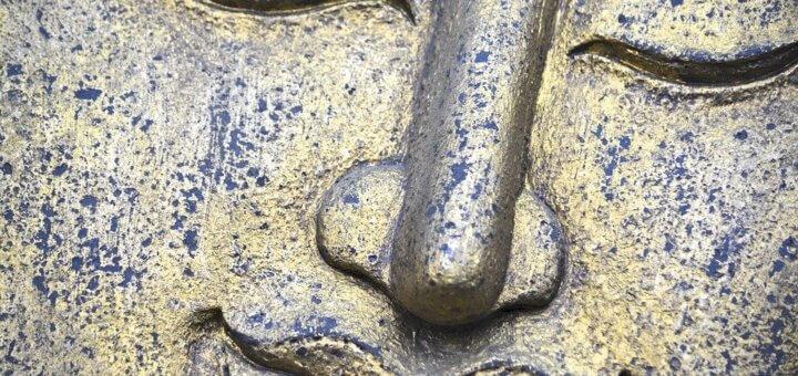 La medicina del buddha